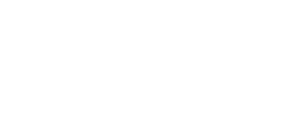 Letzplay logo bgtransparent white
